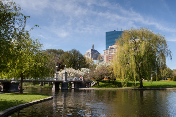 Boston Public Garden One Day Photo Workshop
