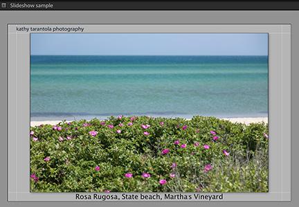 slideshow_web