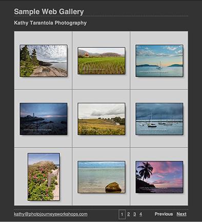 web_gallery_web
